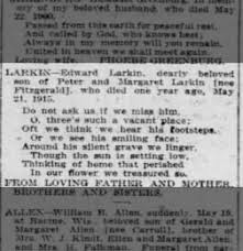 Chicago Tribune from Chicago, Illinois on May 21, 1916 · 15
