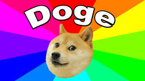 doge dog. Perfect Dog What Is Doge The History And Origin Of The Dog Meme Explained On Doge Dog E