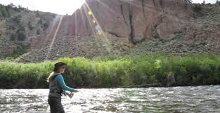 San Juan River Hatch Chart Summer Hatches On The Gunnison Taylor Rivers Three