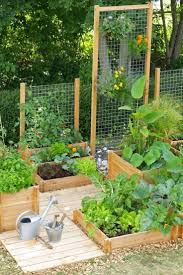 Kitchen Garden Planter 17 Best Ideas About Vegetable Gardening On Pinterest Gardening