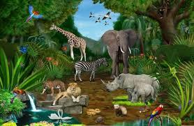 jungle wallpaper for kids. Wonderful For Jungle Kids Wallpaper Nursery Interesting Fresh Set Throughout Jungle Wallpaper For Kids N