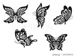 Butterfly Tattoosのイラスト素材 14134012 Pixta