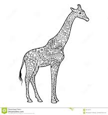 Giraffe Coloring Book For Adults Vector Stock Vector Illustration