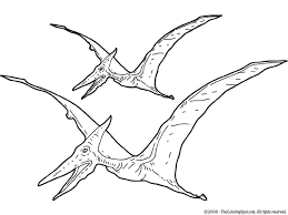 2020 Other Images Pterodactyl Dinosaur Drawing