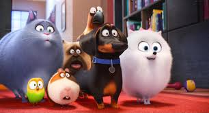 the secret life of pets wallpapers