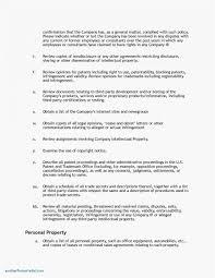 Project Management Responsibility Assignment Matrix Template Plan