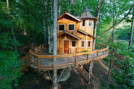 Image Simple 10bestcom Youll Want To Spend The Night In These 10 Treehouses