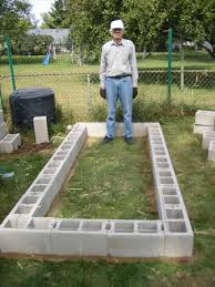 Small Picture Growing Pears in Minnesota making a cinder block raised bed garden