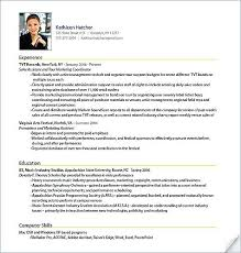 shidduch resume sample resume sample professional resume sample sample shidduch  resume example