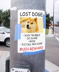 lost doge. Simple Doge LOST DOGE SUCH TRUBBLE SO SCARE WOW PLZ CALL 969DOGE MUCH REWARD And Lost Doge S