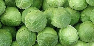 Sağlık - beyaz lahananın faydaları