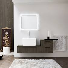 Bathroom Design Cheap Bathroom Cabinets Best Of Bathrooms Design