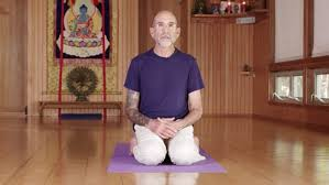 vinyasa 101 ed modestini and slow flow hatha yoga