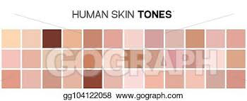 Vector Illustration Skin Tone Color Chart Human Skin