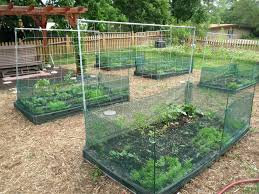 garden netting lowes. Trellis Netting Lowes Garden Home Depot Collection Of Solutions Splendid Captures A