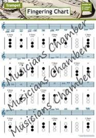 Details About Bb Trumpet And Cornet Fingering Chart A4 Guide New
