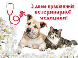 Картинки по запросу картинки до дня ветеринарного працівника