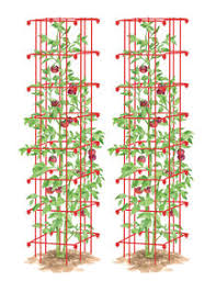 How To Choose Tomato Plant Varieties Gardeners Supply