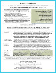 Business Analysis Templates Free Template Business Analysis Template 20