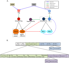 Information-Theoretic Analysis of the Dynamics of an Executable Biological  Model