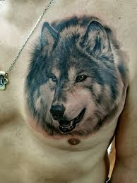 Realistic Wolf Designs Black And Grey Realistic 3d Wolf Tattoo On Man Chest