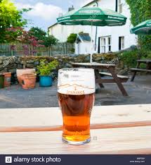 beer garden table. Pint Of Beer On A Garden Table In Pub The Lake District, UK - Jennings Cumbrian Ale S