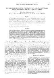 ESTABLISHMENT OF A NEW STINK BUG PEST, OEBALUS INSULARIS (HEMIPTERA:  PENTATOMIDAE), IN FLORIDA RICE
