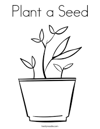 Plant A Seed Coloring Page Twisty Noodle