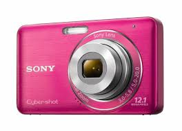 sony cybershot camera 12 1 megapixel. amazon.com : sony dsc-w310 12.1mp digital camera with 4x wide angle zoom steady shot image stabilization and 2.7 inch lcd (pink) point cybershot 12 1 megapixel