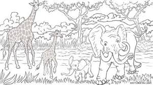 Free Animal Coloring Pages For Adults Coloring Pages Of Elephant