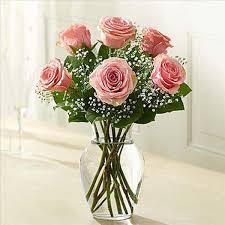 6 pink roses in vase flowers in vase65