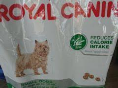 Кошачий <b>корм Royal Canin Sterilised</b> Паштет - Животные ...
