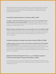 Example Of Resume Summary Extraordinary 44 New Sample Resume Summary Examples Of A Resume Summary Resume