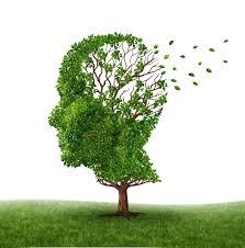 Resultat d'imatges de alzheimer