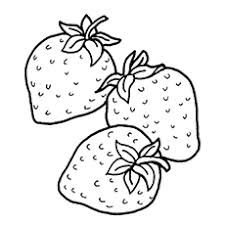 Small Picture Top 15 Strawberry Coloring Pages For Your Little One
