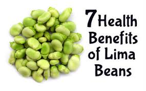 Image result for lima beans image
