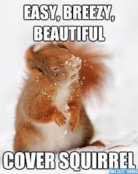 Animal Memes - OMG Cute Things via Relatably.com