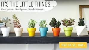small plant for office desk. 100 best plants for office birthday plant gifts flowering small desk