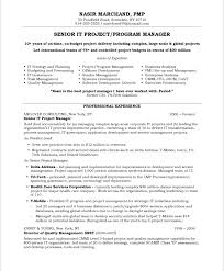 Project Manager Resume Templates Best Senior IT Project Progra Manager Resume Professional Experience
