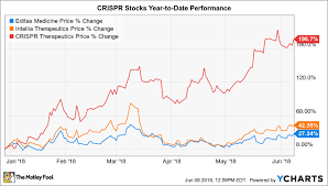 Heres Why The Top Crispr Stocks Rose As Much As 47 1 In