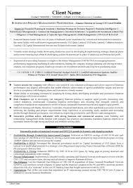 Cfo Resume C Level Resume Examples Therpgmovie 95