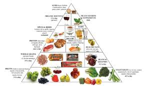 Protein Vitamins Minerals Fats And Carbohydrates Chart Yogshivir Best Yoga Class And Fitness Center Studio For