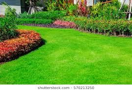 garden landscape design. Interesting Garden Green Lawn The Front Lawn For Background Garden Landscape Design Design  The On Landscape D