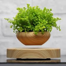 office planter. Wooden Levitating Home \u0026 Office Planter - Decor | Accessories BearHomeHub. S