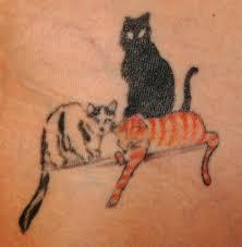 Tatuaggi Di Animali Fotografie Tattoo