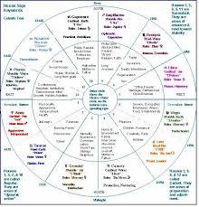 Free Indian Vedic Astrology Birth Chart Birth Flow Charts