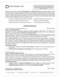 Consultant Resume Example Custom Consultant Resume Template Example Travel Print Management