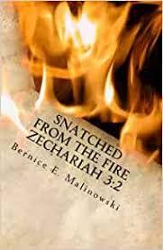 Snatched From the Fire Zechariah 3:2: Malinowski, Bernice E ...