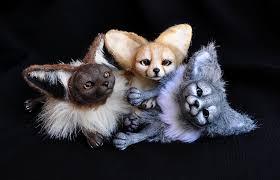 newborn fennec fox. Fine Newborn Fennec Foxes Sold By LisaToms  Throughout Newborn Fox F