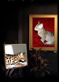 savannah cats florida